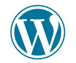 Как убрать в Мета ссылку на WordPress.org