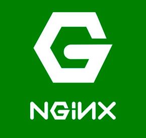 NGINX: включение status-page